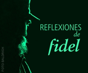 fidelreflection