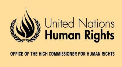 UnitedNationsHumanRights_Logo.preview
